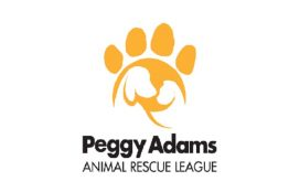 Peggy-Adams-featured-image-1